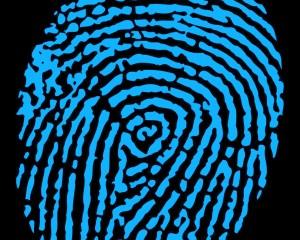 Blue Finger Print